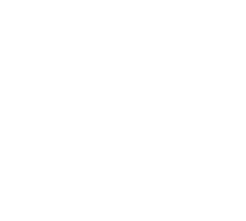 Partner: Stag republic